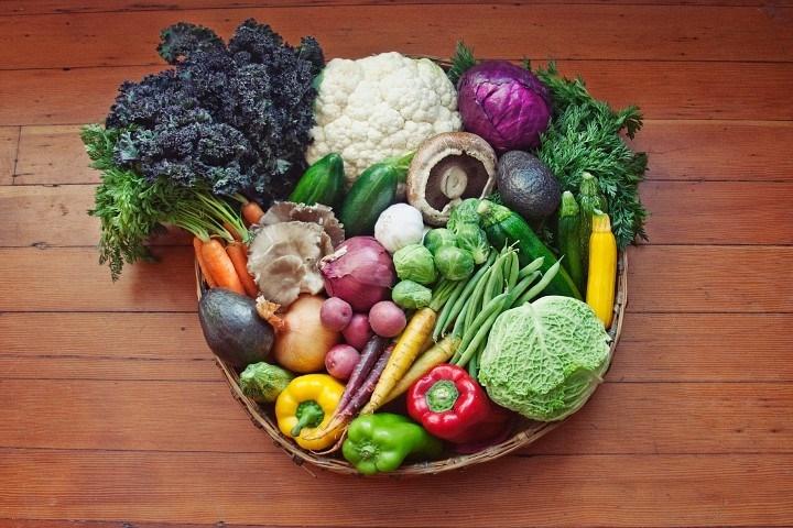 incluir-alimento-en-la-fase-de-consolidacion