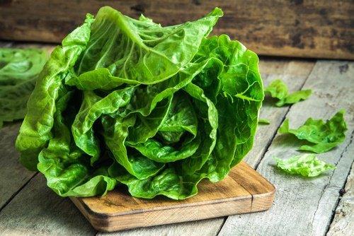 verdura-permitidas-en-la-fase-crucero
